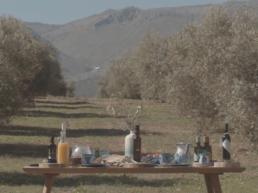 Vídeo de la entrega de Premios AOVE 2019